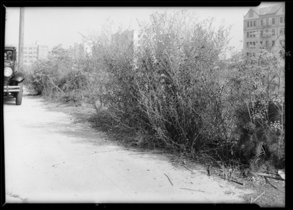 Alley - rear of Saint Germaine Apartments - West 9th Street and South Serrano Avenue, also Buick sedan, Los Angeles, CA, 1933