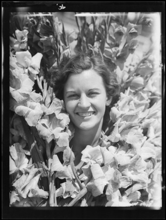Burtnett's negatives, gladiola show, Southern California, 1932