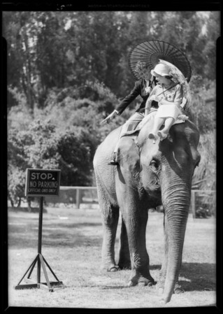 Publicity for convention, donkey, elephant, monkey, Southern California, 1932