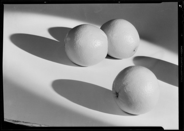 Oranges and shadows, Southern California, 1932