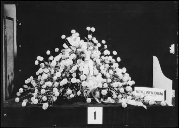 Mrs. Charles Van Valkenburg, dahlia show, Southern California, 1932