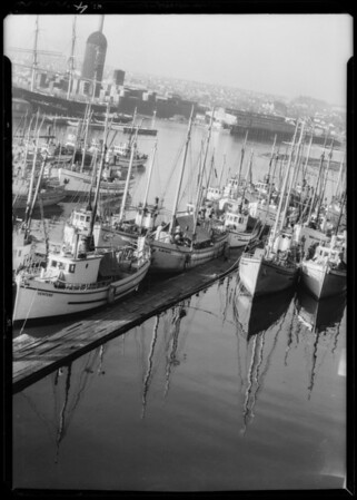 Fishing fleet at Seattle, WA, 1932