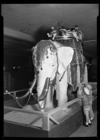 Elephant in toy department, Los Angeles, CA, 1925