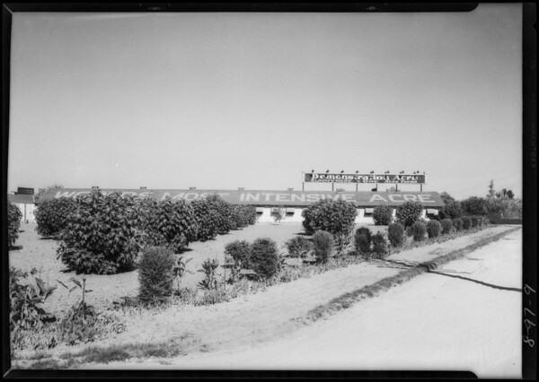 Views of Runnymede, Runnymede Finance Corp., Southern California, 1927