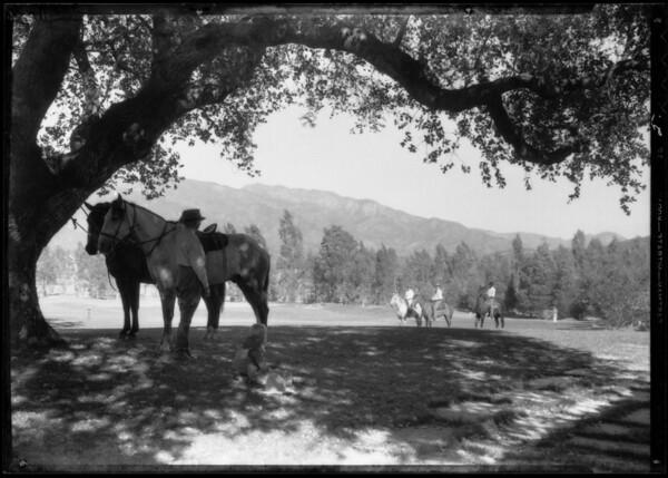 Ojai Scenes, Ojai, CA, 1934