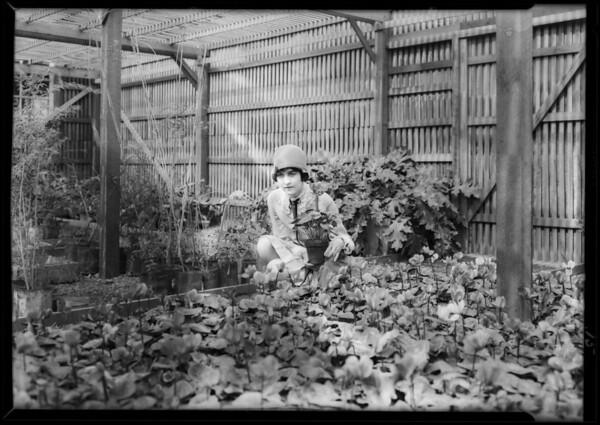 California Botanical Gardens publicity, Southern California, 1928