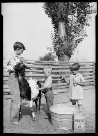 Riverside Fair, Southern California, 1926