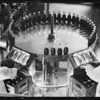 Bottle inspection operations, Coca Cola plant, Southern California, 1933