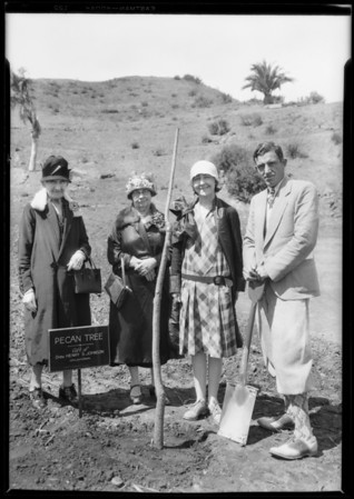 Planting tree from Oklahoma, Southern California, 1928