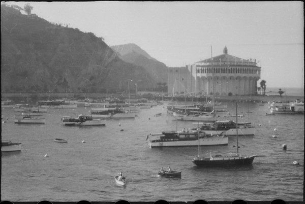Harbor views, wake of ships, Santa Catalina Island, CA, [s.d.]