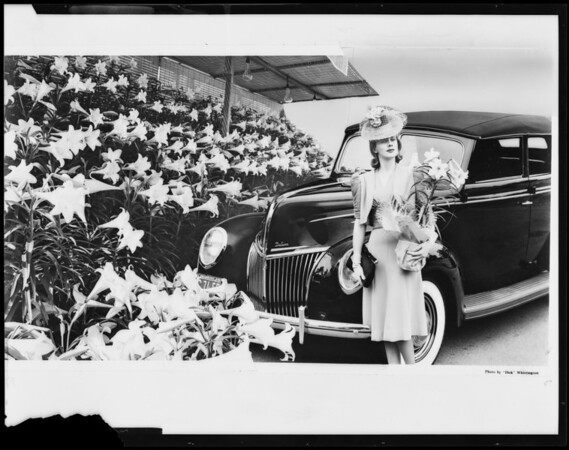 Car with model for Easter, Southern California, 1939