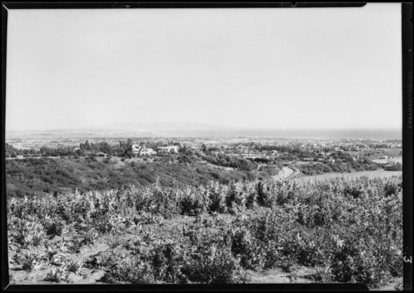California Botanic Garden, views of canyon, Southern California, 1928