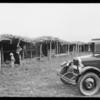 Ramada built by Soboba Indians, Southern California, 1926