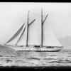 "Sailboat ""The Temptress"", owned by actor John Gilbert, Southern California, 1927"
