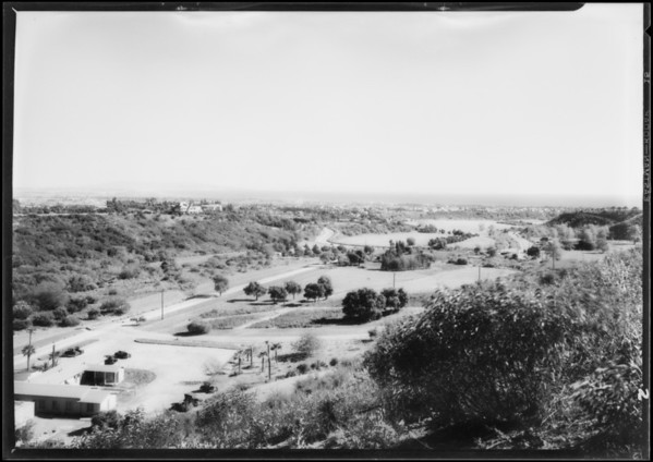 California Botanic Garden, views of canyon, Southern California, 1928