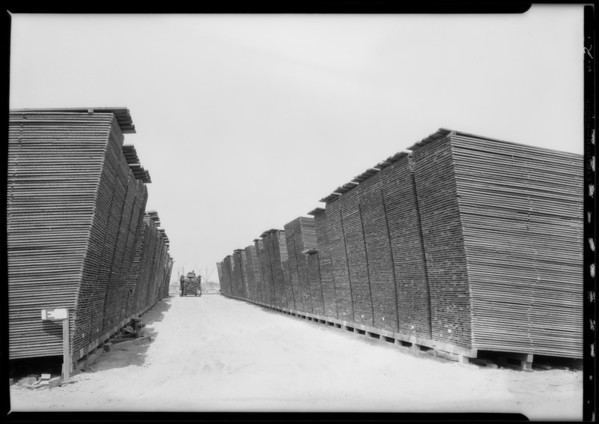 Lumber yard at Gibson Lumber, Long Beach, CA, 1927