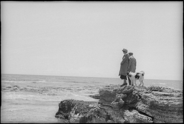 Rugged coastline, surf, Southern California, [s.d.]