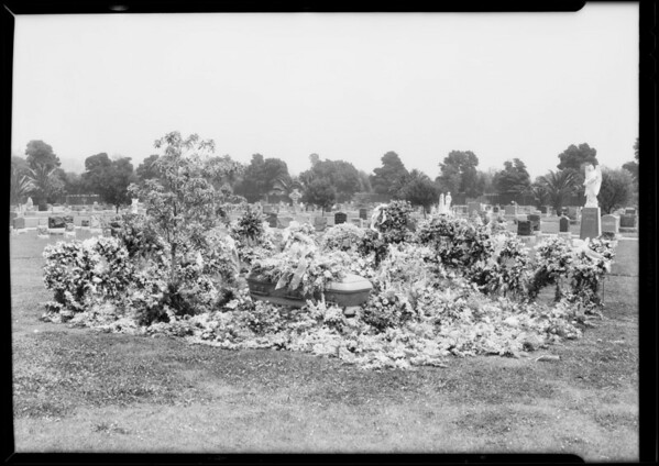 Flowers at grave of Mrs. Greenwood, Southern California, 1933