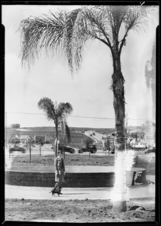 Leimert Park, Los Angeles, CA, 1928