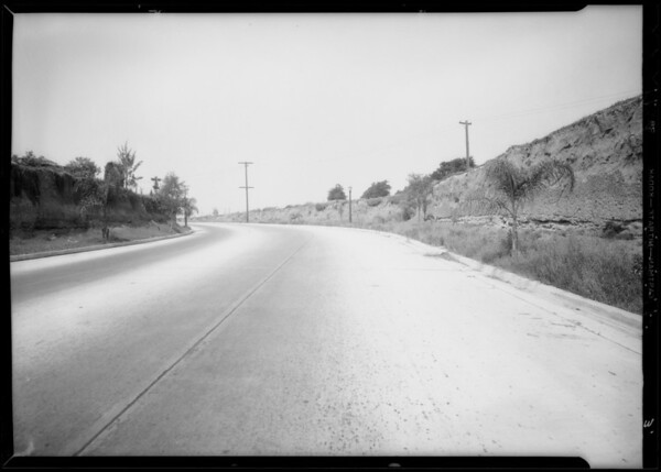 Case of C.L. Reese, assured, William Haight, deceased, Southern California, 1934