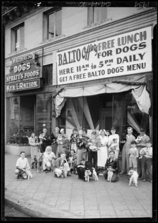 Free lunch for dogs, Southern California, 1934