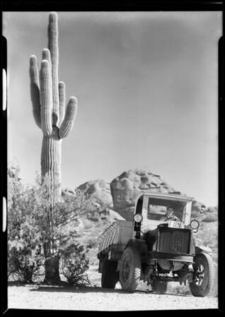 Tovrea Packing Company, Phoenix, AZ, 1932