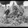 Flowers on grave, Southern California, 1932