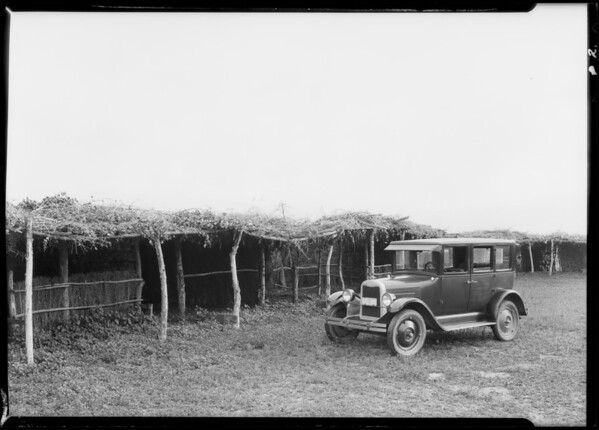Ramada built by Soboba Indians, Southern California, 1926