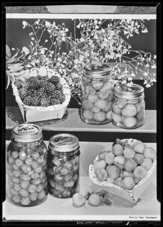 Set up with Kerr jars, Kerr Manufacturing Co., Southern California, 1940
