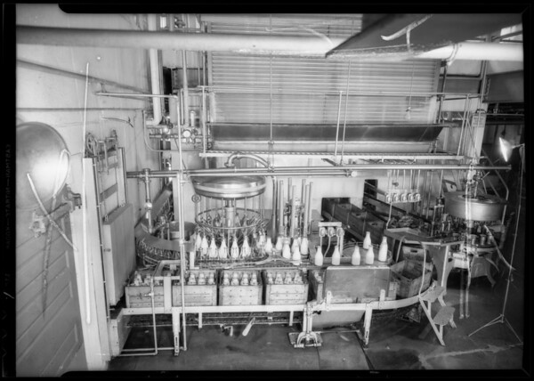 Bottling machine & milkman, Southern California, 1935