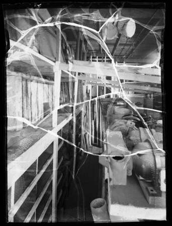 Interiors and exteriors of yard, Southern California, 1935