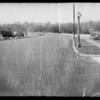 Skid marks on Pasadena Avenue, Mrs. Annie Bailey pedestrian deceased, Mrs. Kelen M. Wilson assured, Los Angeles, CA, 1935