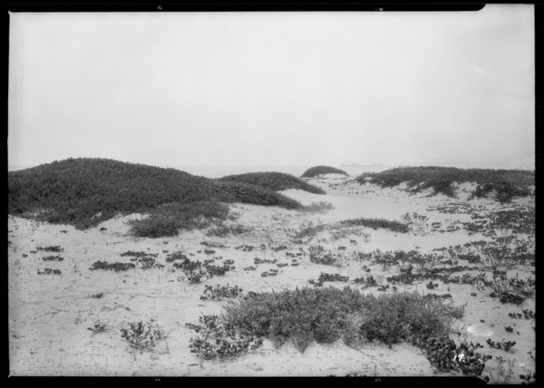 Pierpont Bay tract, Ventura, CA, 1926