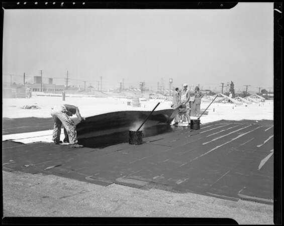 Applying roofing, Safeway meat warehouse, Southern California, 1940