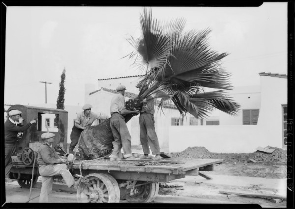 Walter H. Leimert, Southern California, 1926