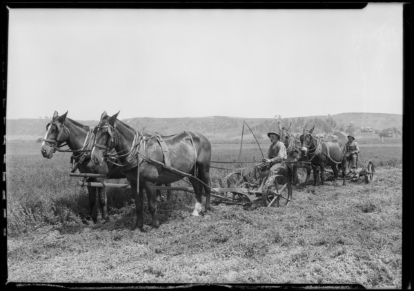 Santa Fe Valley Farms - Del Mar, CA, 1926