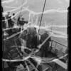 Deep sea fishing, Southern California, 1936