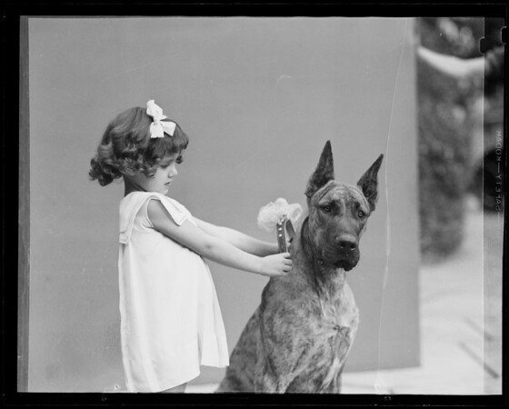 Little girl with Great Dane dog, Southern California, 1935