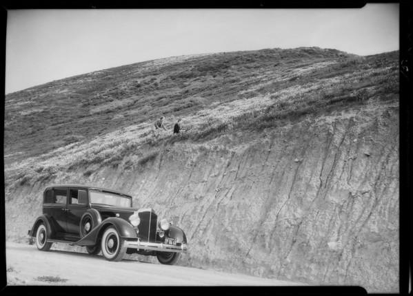 Highways - coast line near Santa Maria, Packard motorlogue, Southern California, 1935