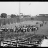 Boys baseball practice, Wrigley Field, Los Angeles, CA, 1931