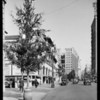 Christmas trees on Broadway, Los Angeles, CA, 1930