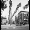 Palm Drive and West Adams Boulevard, Southern California, 1930
