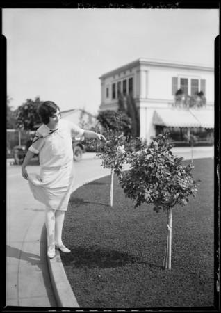 Lawn sprinkler, Gee Sprinkler Co., Southern California, 1925