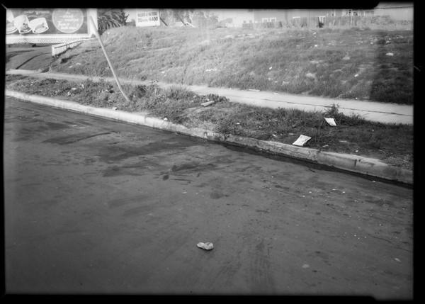 Curbing near West Pico Boulevard & South Western Avenue, Los Angeles, CA, 1931