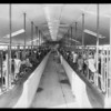 Views of dairy, Southern California, 1931