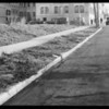 Curbing near West Pico Boulevard & South Western Avenue, Los Angeles, CA, 1931