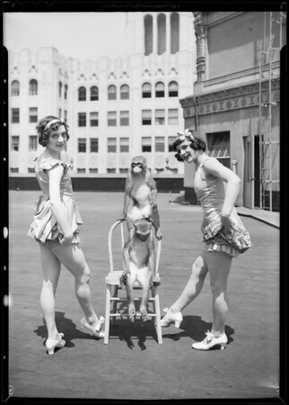 Trained monkeys & girls, Southern California, 1931