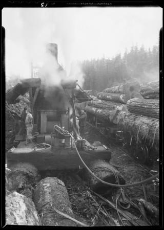 Logging, Union Oil Co., Southern California, 1932