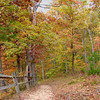 Trail in Fall