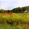 Barn with Fields